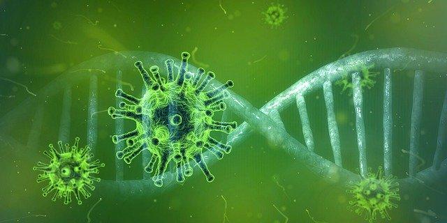 Corona-Virus – SARS-CoV-2